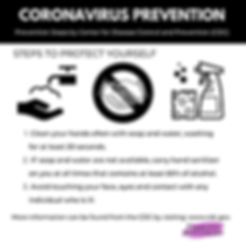 CORONAVIRUS PREVENTION-2.png