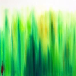 Morgen über der grünen Wiese