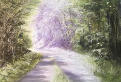 Le chemin des fées