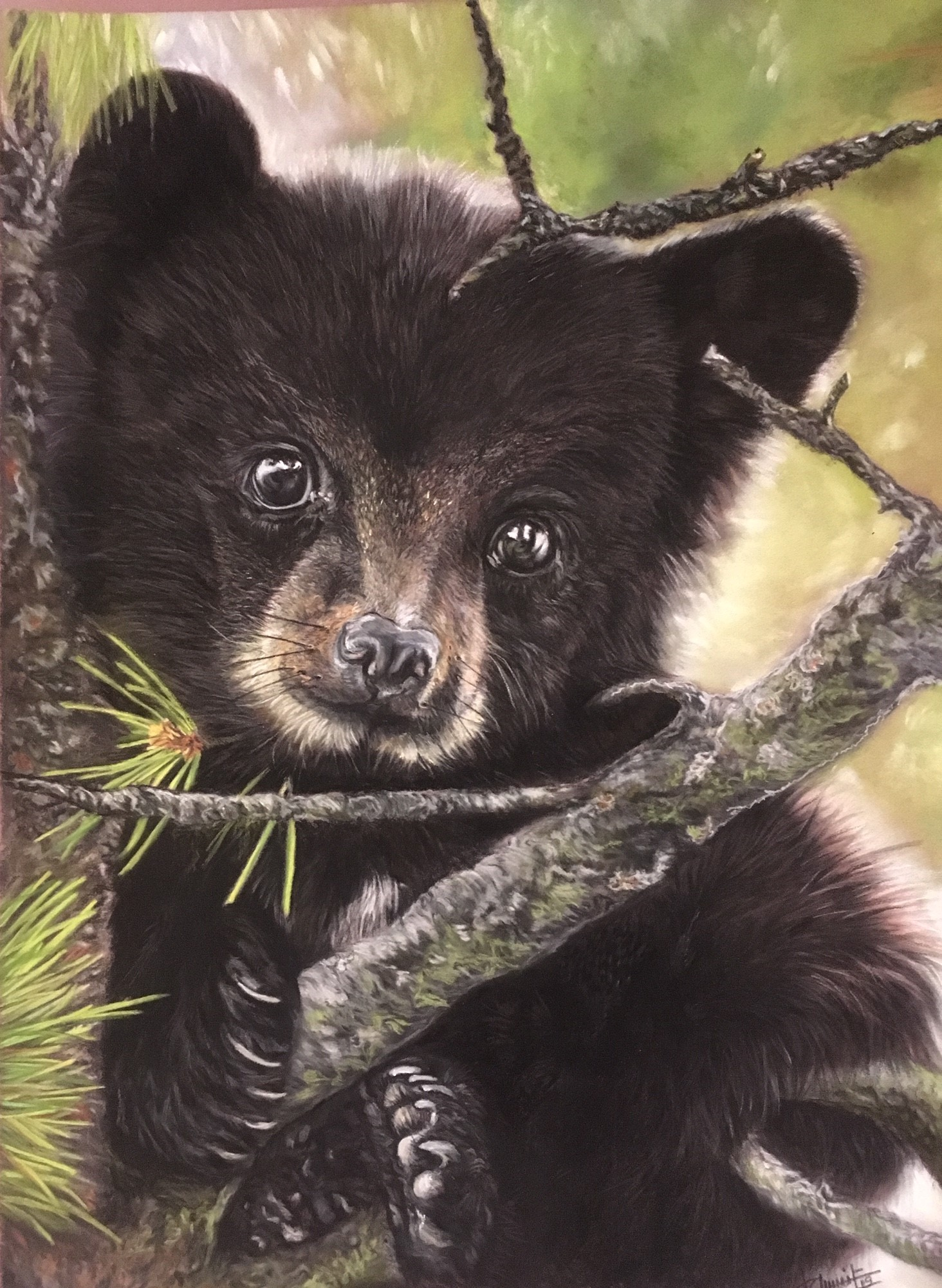 petit ours brun      150€
