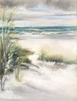 Le vent dans les dunes