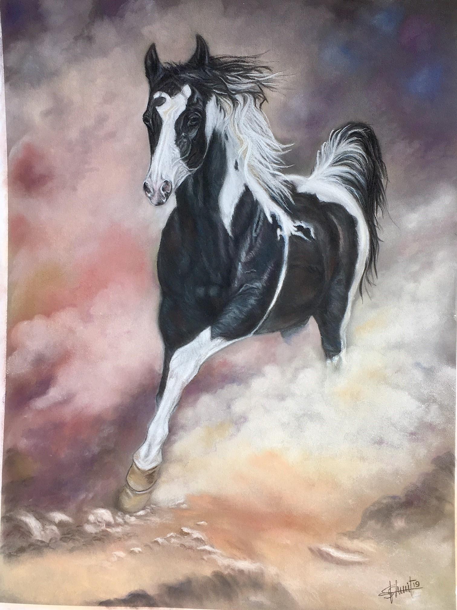 Paint horse  150 €