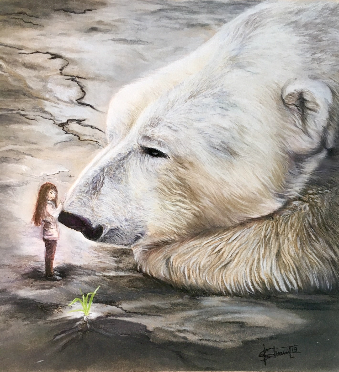 le rêve de l'ours_