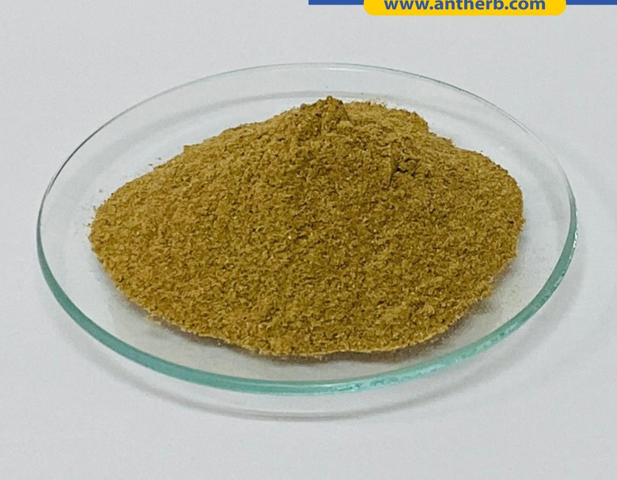 Garcinia Cambogia Powder Extract.jpg