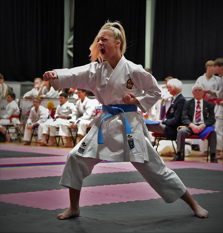 Hartlepool Wadokai Karate Club (138).JPG