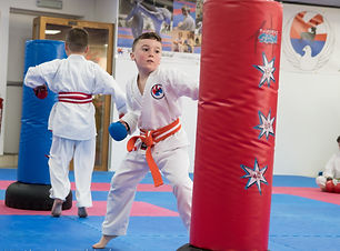 Hartlepool Wadokai Karate Club (29).jpg