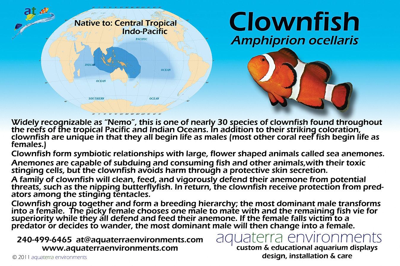 aquarium educational information