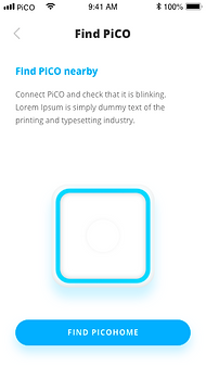 E-1-1_find_pico.png