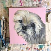 Mya's Rainbow Friend portrait