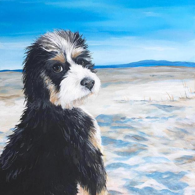custom pet painting hand painted raleigh