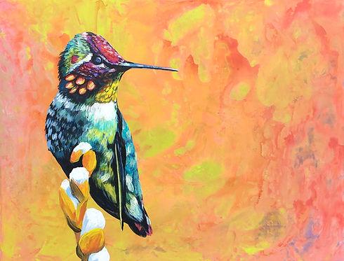 Hummingbird on Cotton AYJ.jpg