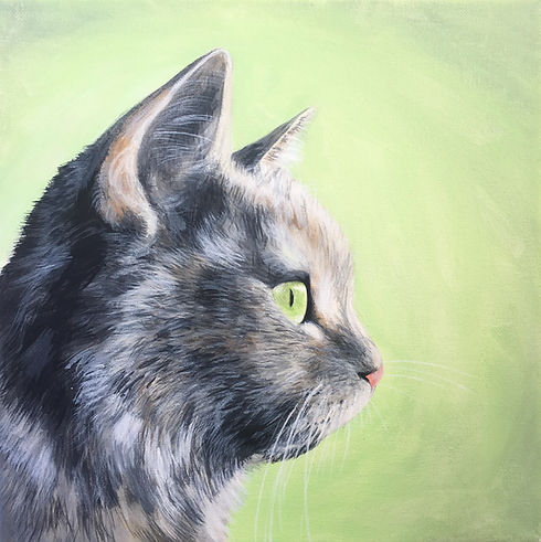 cat portrait by Amy Yeager Jorge.jpg