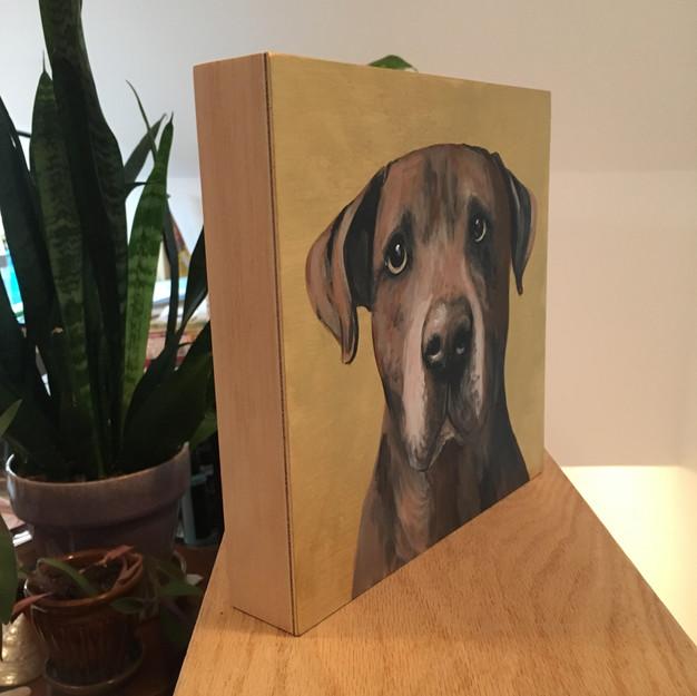 woodboard pet portrait