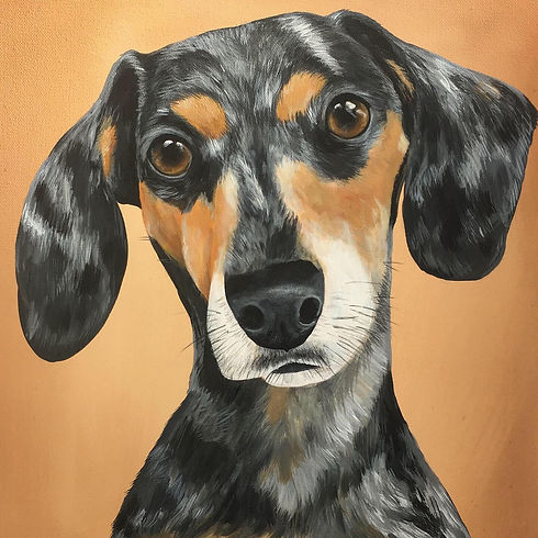 handpainted pet portrait amy yeager.jpg