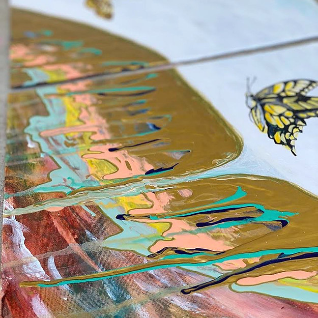 close up butterfly abstract.jpg