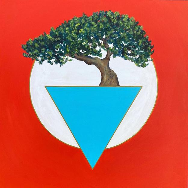 bonsai balance.jpg