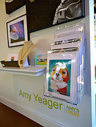 Amy Yeager Jorge artist NC zapow gallery Asheville NC