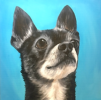 pet portraitist raleigh nc artist amy yeager