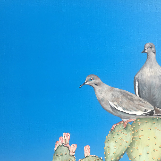 Two Texas Doves