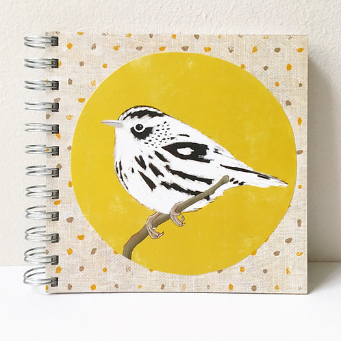 Bird Book - Black and White Warbler
