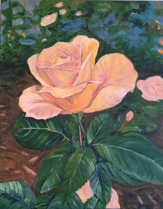 """""""A rose"""", Oil on 16"""" x 20"""" canvas, $450"""