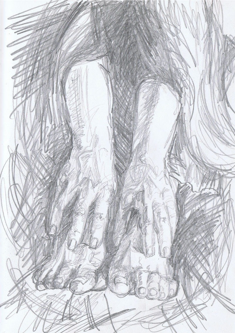 """Hands, Feet, Hair"". 8"" x 10"", pencil on paper, $150"