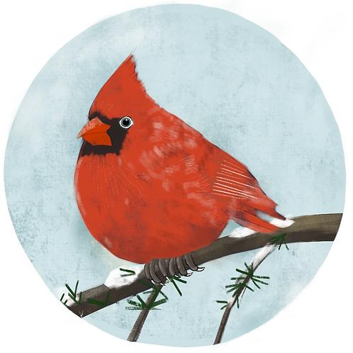 Art Print - Northern Cardinal