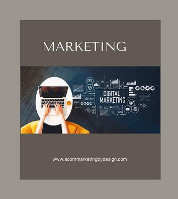 Aesthetic Social Media Marketing Worksho
