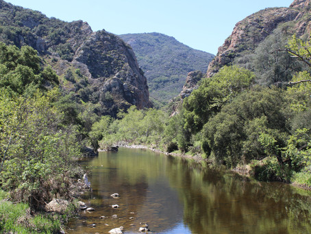Photography and Hiking at Malibu Creek State Park