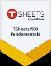 Badge TSheetsPRO Fundamentals.png
