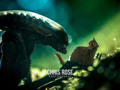 Alien and Jonesy