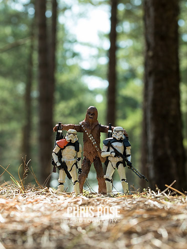Chewie and Troopers