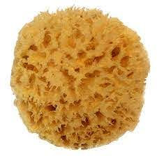 Natural Sea Sponge- Medium