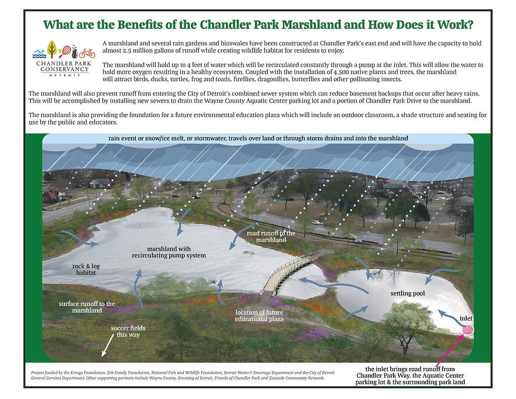 Marshland info 1.jpg
