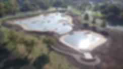 Chandler Park Marshland