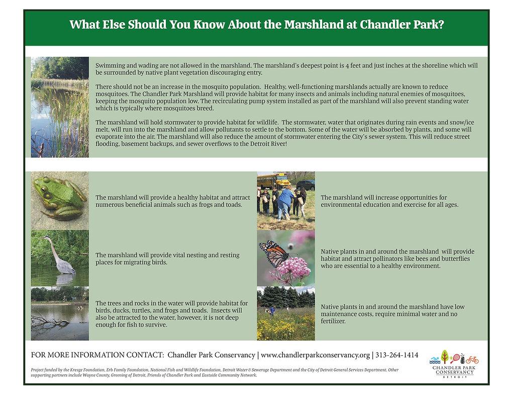 Marshland Info 2.jpg