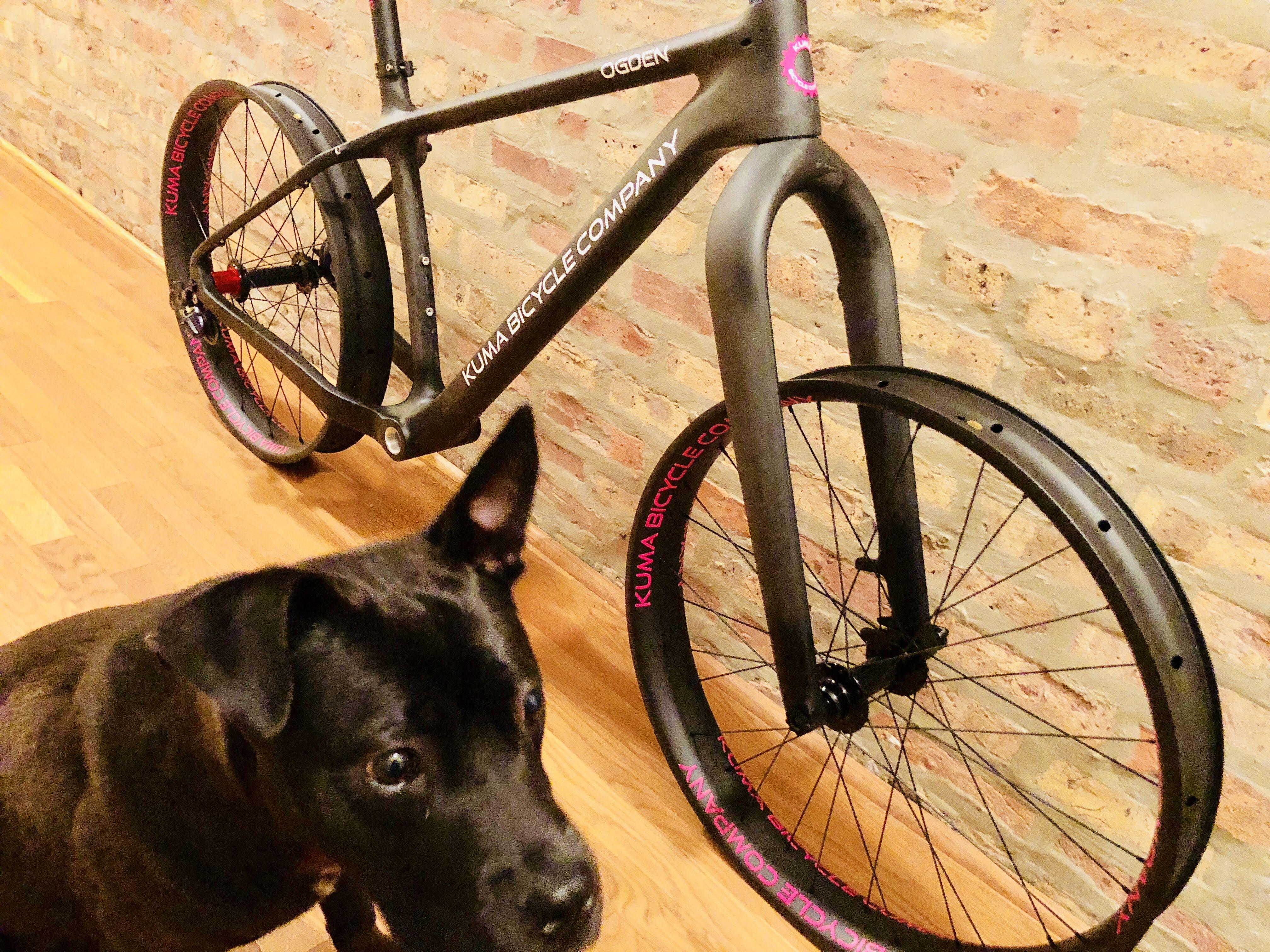 Ogden Fat Bike