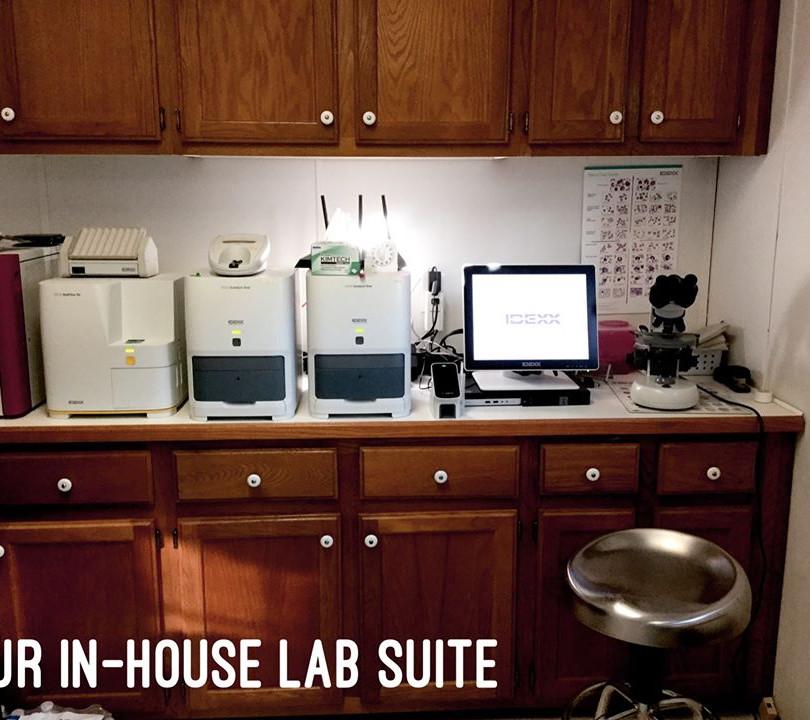 Tour Lab.jpg