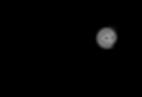 SNYP logo.png