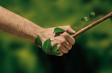 être en harmonie avec la nature, en symbiose.