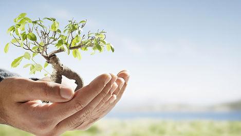 Cultiver la terre, prendre soin de la planète