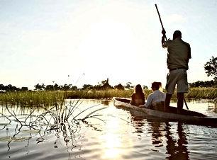 okavango3.jpg