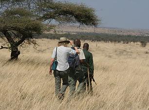 Serengeti-Walk-5.jpg