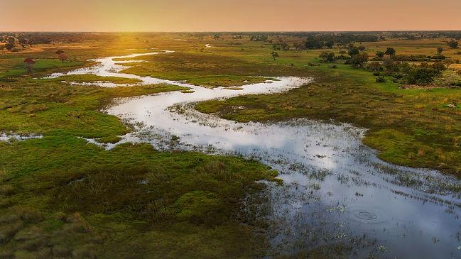 Okavango.jpg