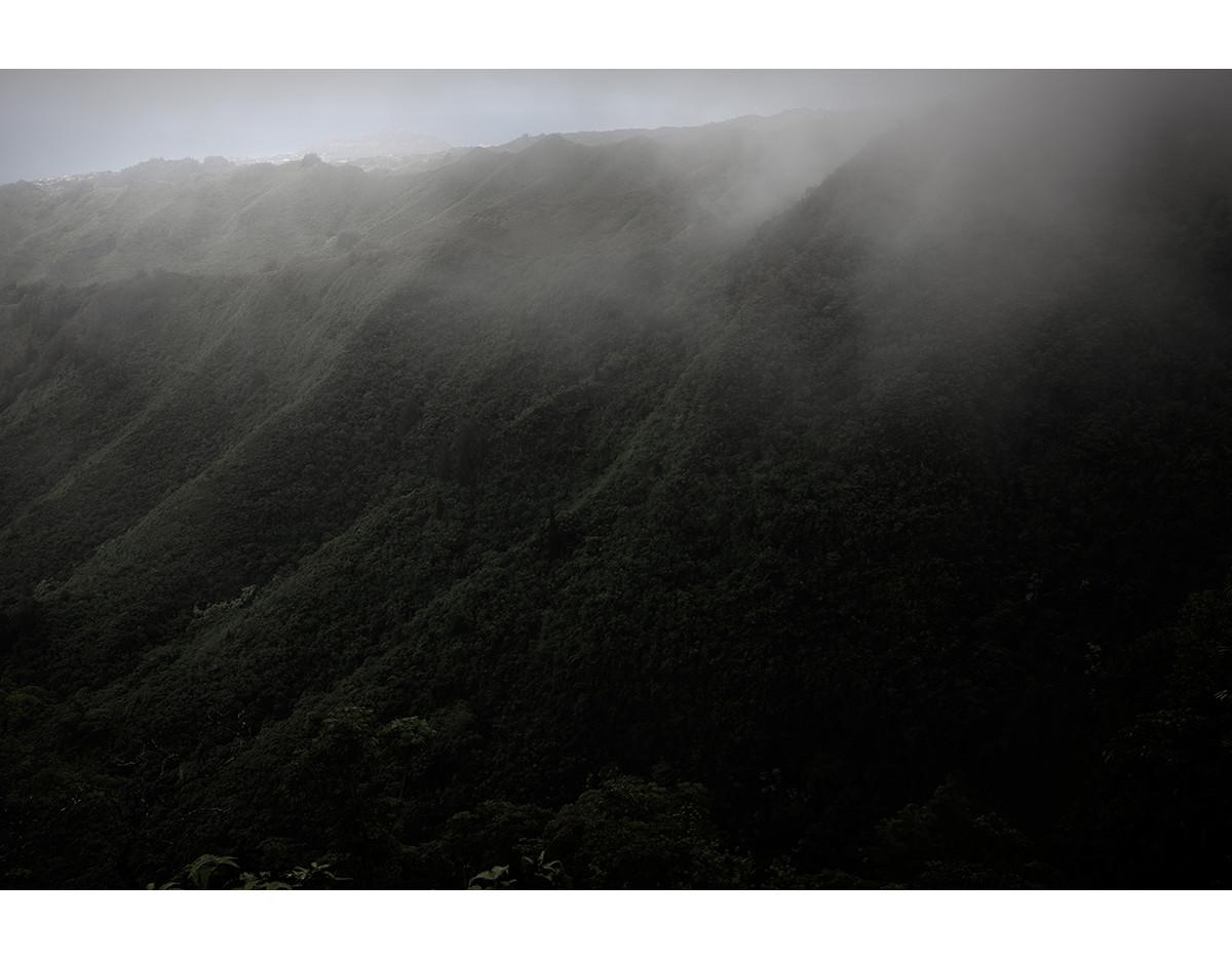 Haunted Woods in Hawaii 23