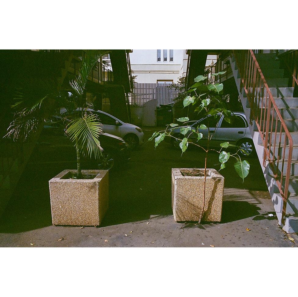 Journals of Waikiki 07