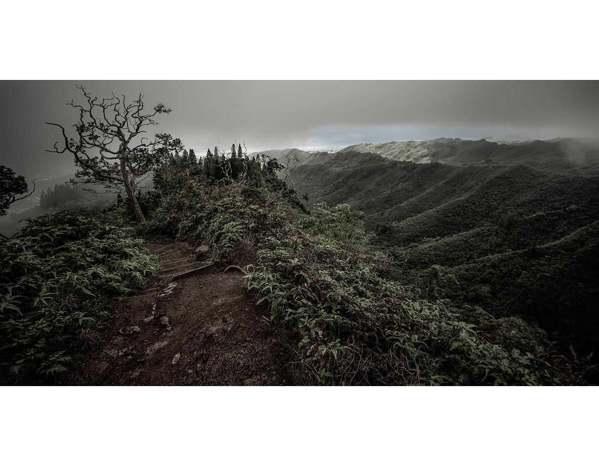 Haunted Woods in Hawaii 17