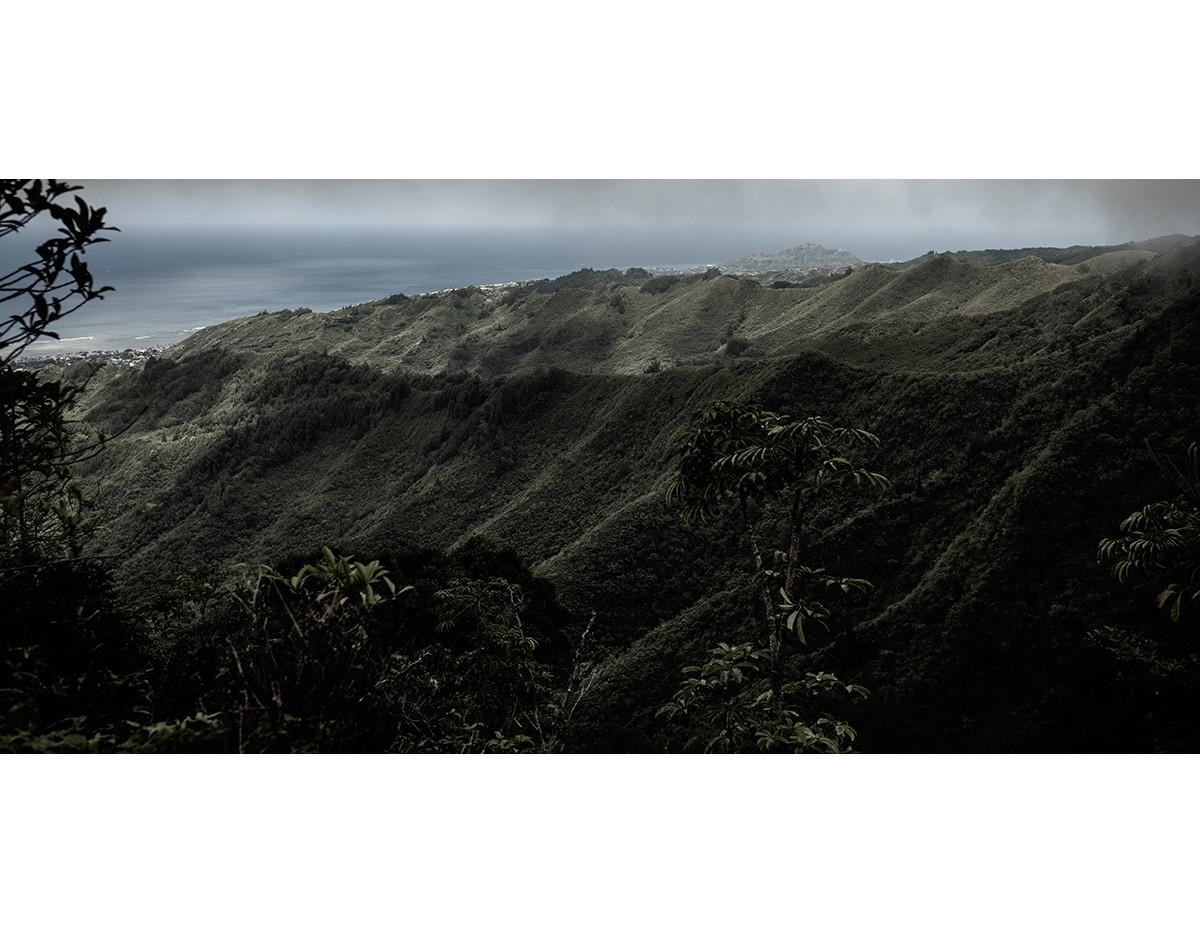 Haunted Woods in Hawaii 14