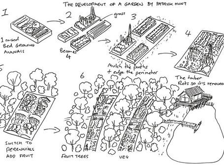 The development of a garden