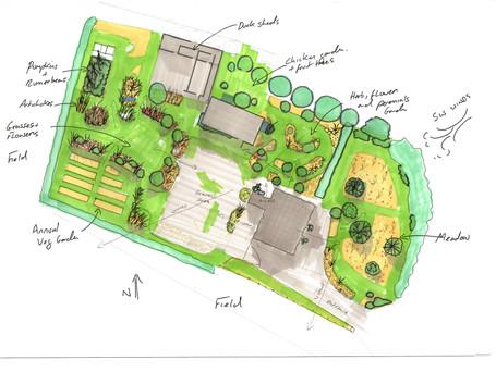 Sketch plan for my Garden